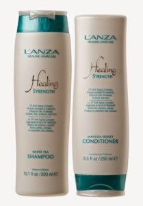 healing strength shampoo and conditioner Silk Salon Paisley